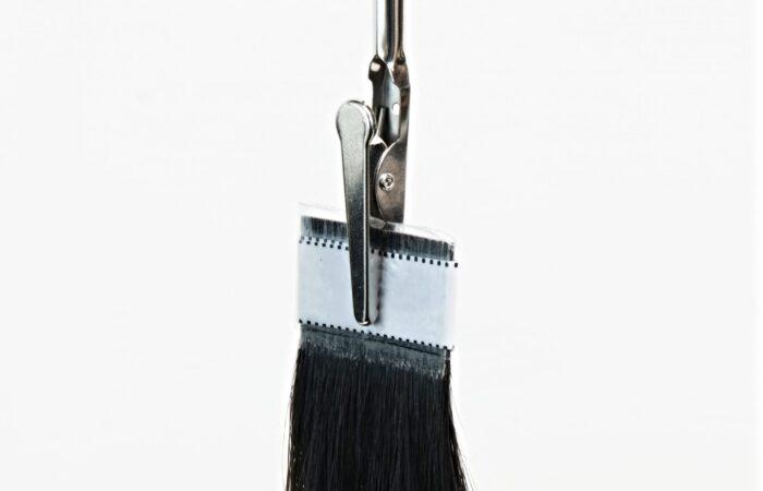 magnetic hair tress holder